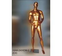 Манекен мужской кукла Арт.HAM.24(C4)